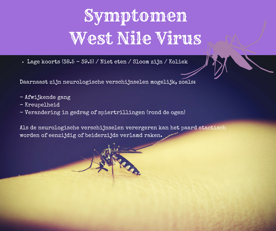Symptomen West Nile Virus